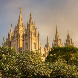 salt-lake-temple-spring-sunset