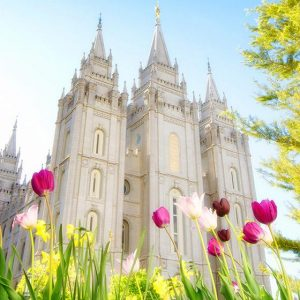 salt-lake-temple-spring-tulips