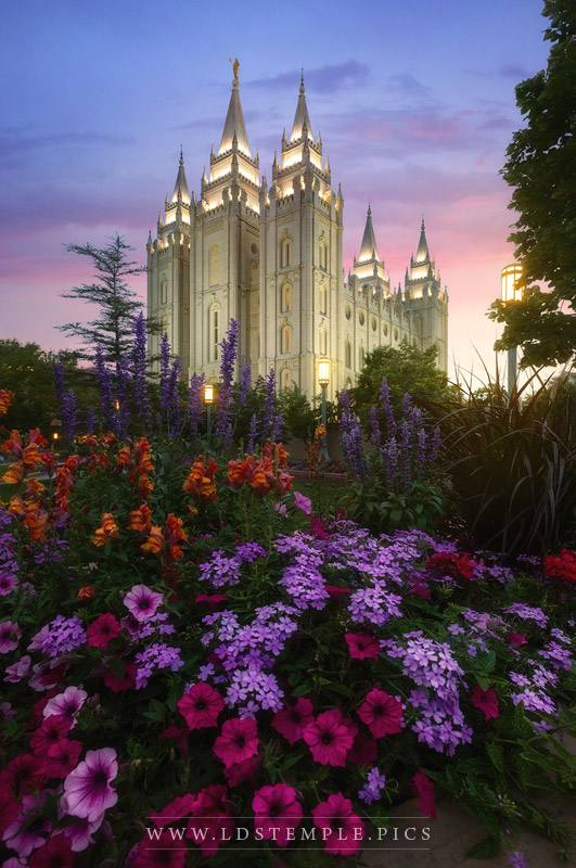 Salt Lake Temple Summer Flowers Print
