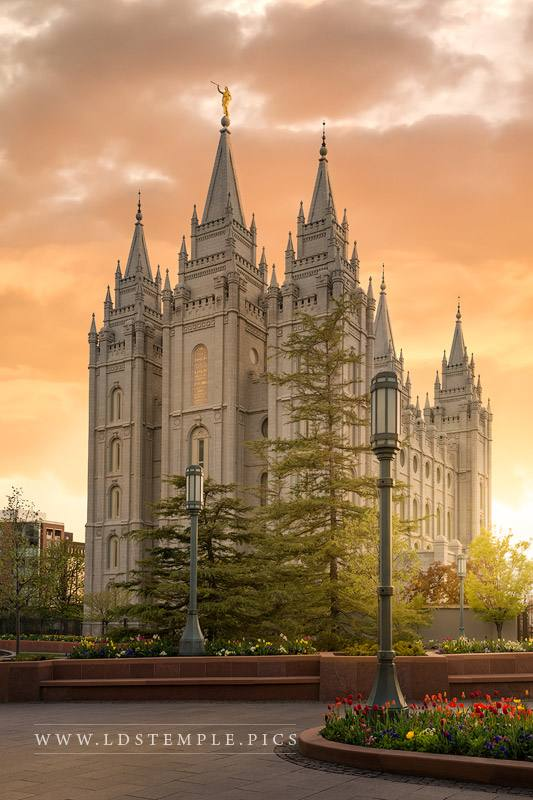 Salt Lake Temple The Promise Print