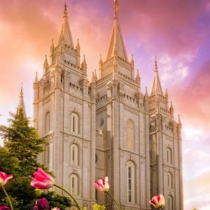 salt-lake-temple-tulips-sunset-vertical