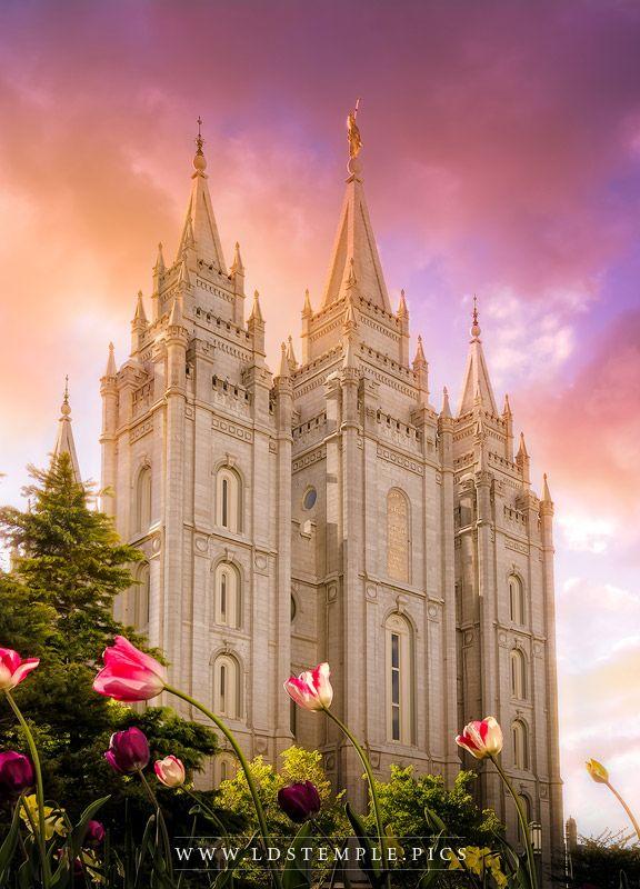 Salt Lake Temple Tulips Sunset Vertical Print