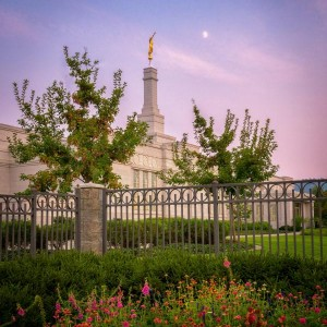 spokane-temple-fading-sunset-and-flowers