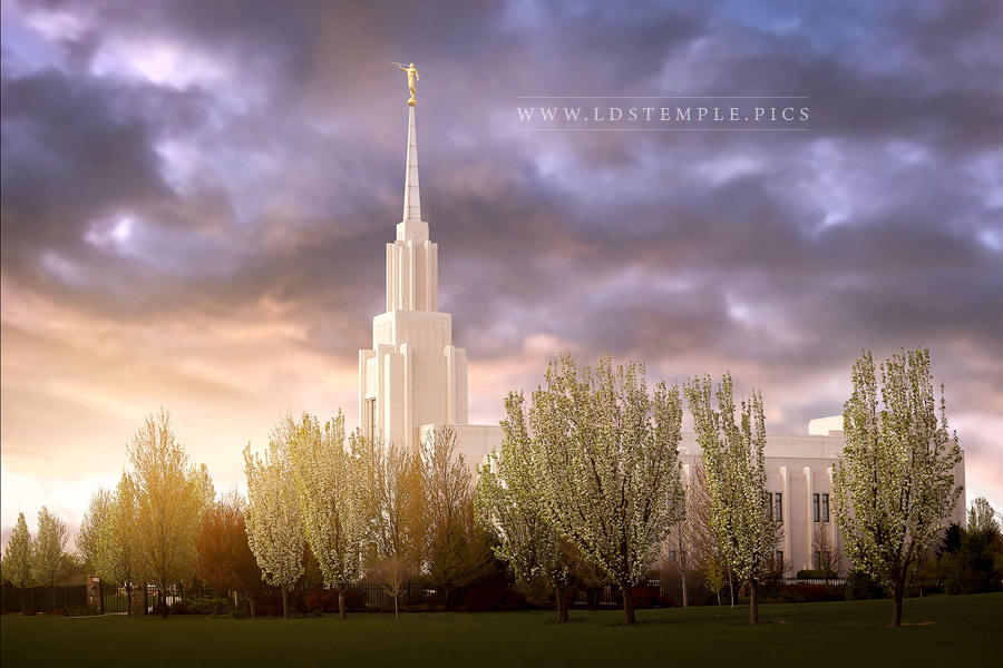 Twin Falls Temple Spring Blossoms Print