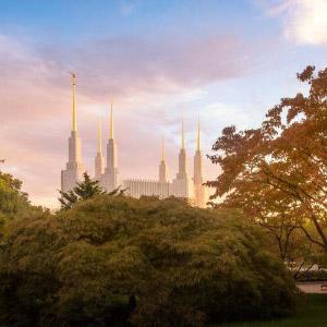 washington-dc-temple-autumn-sunset-pano